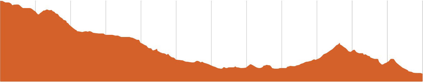 St Helens MTB | Salty Dog Elevation